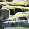 Roman stones at Chesters Bridge